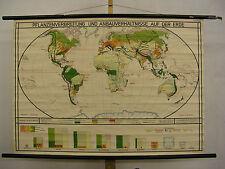 Schulwandkarte schöne alte Pflanzenverbreitung Weltkarte 125x88 vintage map~1940