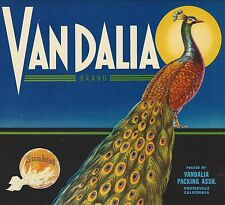 "RARE OLD ORIGINAL 1930'S PEACOCK ""VANDALIA BRAND"" LABEL PORTERVILLE CALIFORNIA"