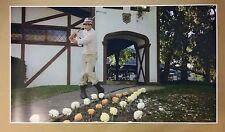 "Caddyshack GIANT WIDE 24"" x 42"" Movie Poster Print Bill Murray Golf Man Cave Bar"