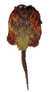 Bisley Pheasant Skin Pelt *Free P&P*
