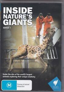 Inside Nature's Giants - Series 1 - DVD