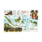 MAP OF INDONESIA ANIMALS MAP KIDS EDUCATIONAL POSTER DECOR 5X3FT