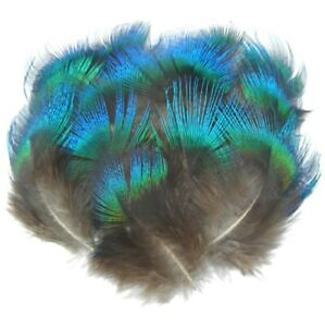 Rare Natural Blue Fan Feathers 3cm - 8cm Peacock Fly Craft Hat Arts Costume UK