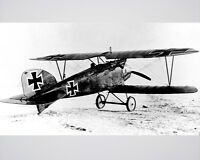 """New 8x10 World War I Photo: Albatros D.III of """"Red Baron"""" Manfred von Richthofen"""