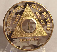 10 Year AA Medallion Elegant Glitter Purple Gold Plated Sobriety Chip Coin Ten
