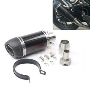 51mm Universal Motorcycle Exhaust Pipe Modified Muffler Gloss Carbon Fiber 250mm