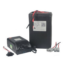 48V 30Ah Lithium ion Battery Pack For 1000W-1500W Pedicab Ebike Scooter Tricycle