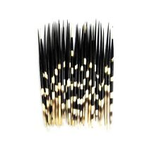 ONE 10 Inch African Porcupine Quill Long Hair Stick Crafts Taxidermy Animal