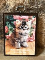 Vintage Cat Wall Plaque Hanging Art Kitten Paula Impressions Mini Photo On Wood