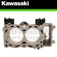 NEW 2009 - 2011 GENUINE KAWASAKI NINJA 650R / ER-6n ENGINE CYLINDER 11005-0114