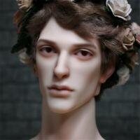 Grant Phillippe White Skin Brown Eyes Handsome Boy doll for BJD SD Dollshe toy