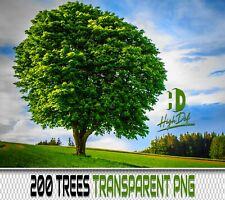 200 GREEN TREES TRANSPARENT PNG DIGITAL PHOTOSHOP OVERLAYS BACKDROPS BACKGROUNDS