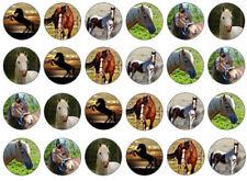 "Horse Edible Cupcake Toppers   24 1"" circles per sheet"