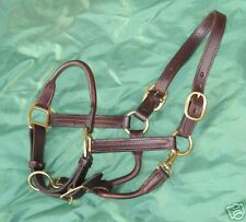 """NEW BROWN Rolled nose Leather Halter  w/snap XL  or Warmblood 1"""" triple stitched"""