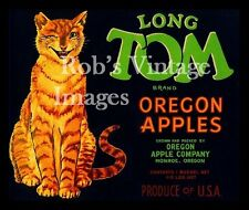 Long Tom Cat Apple Fruit Crate Label Art Print   Monroe, Oregon