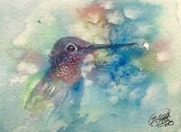ACEO Hummingbird original painting watercolor art listed by artist American EAEH