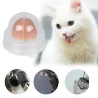 Gesund Welpe Cat Katzenminze Zucker Katzen Snacks Lecken Candy Energy Ball