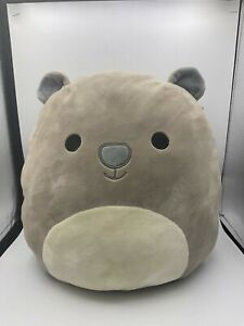 Squishmallows Wesley The Wombat Australian Exclusive Plush Stuffed Toy Animal