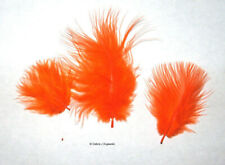 """Marabou Feathers Small 1-3"""" fluffs Orange 7 grams approx. 105 per bag"""