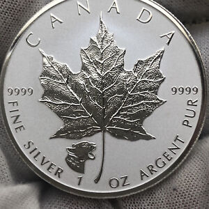 2017 Canadian Cougar Privy Silver Reverse Proof 5 Dollar Coin - Superb Gem Coin!