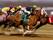☆ HORSE RACING ☆ 60x Great Horseracing Books Scanned to DVD-Rom Disc ☆