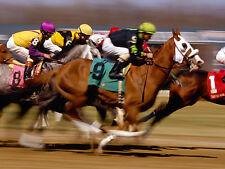 ☆ horse racing ☆ 60x grande cité livres numérisés sur dvd-rom disc ☆