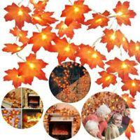 Autumn Maple Leaves LED String Lights Halloween Xmas Fall Garden Lamp Decor aa