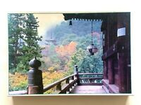 RARE SUNBIRD Hasedera in Nara No.10-82 Japan 1000 piece Jigsaw Puzzle COMPLETE