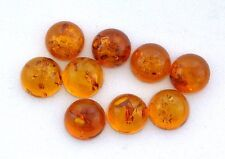 TWO 8mm Round Natural REAL Baltic Amber Cab Cabochon Gem Stone Gemstone EBS8032