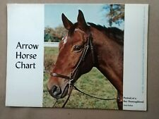Educational Reference Chart Scholastic Magazine Arrow Horse chart
