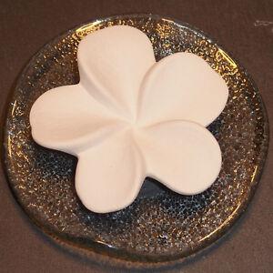 Primavera Duftstein Frangipani auf Glasteller praktischer Duftträger