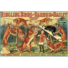 """Tigers! Reproduction Vintage Ring. Bros/Barnum & Baily Circus Poster HUGE 36x54"""""""