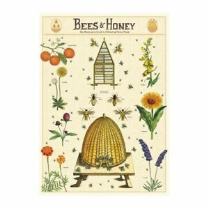 Cavallini Bees Honey Insect Vintage Poster   Wall Art Print Craft Decoration