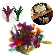 """100pcs 1""""-3"""" Colorful Spotted Feathers for DIY Craft Jewelry and Clothing Decor"""