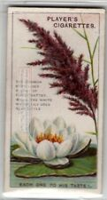 Common Reed and White Water Lily Plants 90+ Y/O Trade Ad Card