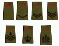 ALL RANKS Pair of ACF / CCF RANK SLIDES for MTP ( Army Cadet Force Olive Green