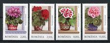 Romania 2017 MNH Windows Smile Geraniums 4v Set Plants Flora Flowers Stamps