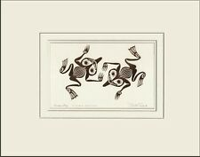 Haida artist BILL REID Embossed COPPER FROG PRINT - new matted art