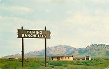 Deming New Mexico~Ranchettes~New Homes Florida Mountains In The Background~1950s