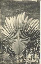 Malaya-Strait Settlements SG#196(single frank) PENANG-A 29/AU/1913 postcard