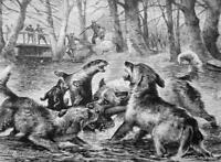 OTTER HUNT Dogs Forest Stream  - VICTORIAN Era Print