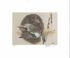 SOUTH CAROLINA  #8 1988 DUCK STAMP PRINT BOYNKIN SPANIEL By Jim Killen