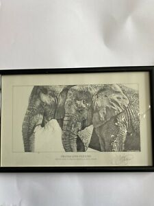 KEVIN J HAYLER Trunks And Textures DRAWING ART PRINT HAND SIGNED Custom Frame