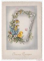 Pascua Tarjeta Postal Vintage Años 50 Pollito Mariposa Flores por Sauce y Campo