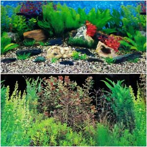 "Double Sided Aquarium Background 19"" x 48"" Deep in Rock or Natural Plants Themed"