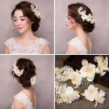 Women White Dried Flower Crystal Hair Clips Hair Comb Hairpin Hair Accessory Set