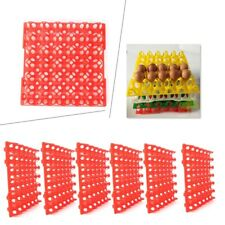 Egg Trays Fit Incubator Storage Holds 30 Poultry Eggs Industry Tools 6 Pk
