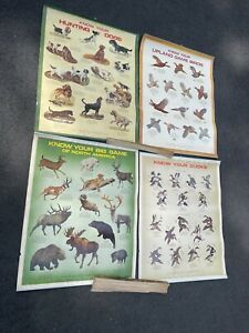 Vtg 1971-74 Remington Know your Game dog duck birds animal Hunting Poster Chart