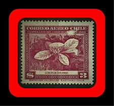 FLORA, LOXODON CHILENSIS, CLAUDIO GAY BOOK, MNH, AIR MAIL, 1948