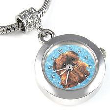 Griffon Bruxellois Dog Silver European Bead Watch Eba65